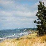 Saugatuck Dunes Coastal Alliance